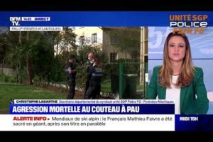 AGRESSION MORTELLE À PAU : Le secrétaire départemental UNITÉ SGP POLICE 64 sur BFM Tv